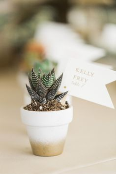 DIY succulent planters: Photography : Justin DeMutiis Photography Read More on… Home Wedding, Wedding Vows, Wedding Blog, Wedding Ideas, Wedding Rehearsal, Autumn Wedding, Budget Wedding, Wedding Anniversary, Rustic Wedding