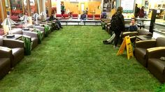 Grass installed in the library // Cornell installs indoor lawn to soothe students during finals