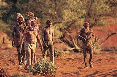 Australia is known for its natural wonders, beaches, deserts the bush and the Outback approx Australians live in rural areas Aboriginal Culture, Rural Area, Australia Living, People Of The World, Future Travel, Natural Wonders, Camel, Tours, History