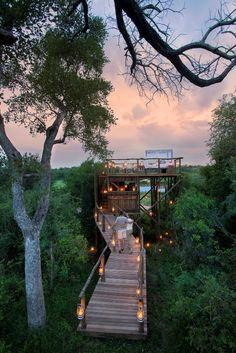 Casa na árvore na reserva Kruger National Park, na África do Sul é uma opção de hospedagem.