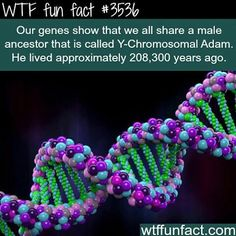 WTF Fun facts Oh and I wonder why everyone is F** tripping about race!