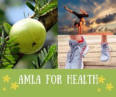 Is Amla great for treating Cough and Cold? - Best Cough Medicine for Adults Best Cough Medicine, Bad Cough, Medical Background, Flu Symptoms, Cough Remedies, Cold, Health, Health Care, Salud