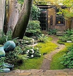 shade garden with shed