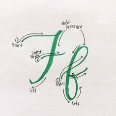 Day 6: Ff F is one of my least favorite capital letters, but one of my favorite lowercase letters.  Check out where to start each letter & how to follow the strokes. As you're moving up a letter (or across in the case of F), your stroke is light. As you t
