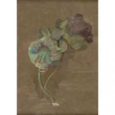 John LaFarge (American, 1835-1910)  Flower Study: Cobaea Scandens (Cup and Saucer Vine) , circa 1906 Unsigned Watercolor and gouache on brown toned paper