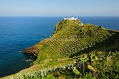Maia lighthouse with terraced vineyards by the sea. Santa Maria, Azores islands, Portugal