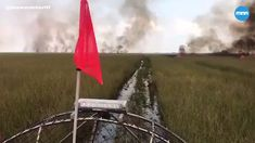The Sawgrass Fire in the Florida Everglades has almost doubled in the course of one day. It now covers acres. Sand Pictures, Florida Everglades, Mountain Pictures, Natural Disasters, Spreads, Mother Nature, Wilderness, Acre, Picture Video