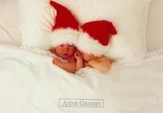 Anne Geddes: Bébés Noël