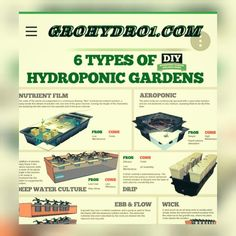 hydroponics growing systems, from the basic to large systems see examples. We do hydroponic growing consulting from seed to finish hydroponic system consulting Hydroponic Farming, Hydroponic Growing, Hydroponics System, Diy Hydroponics, Aquaponics Garden, Aquaponics Fish, Growing Plants, Self Sufficient, Grow Lights