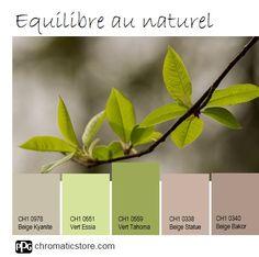 En mars, le #Vert Tahoma CH1 0559, #couleur de la #nature et des jeunes pousses s'invite dans nos déco intérieures. www.chromaticstore.com