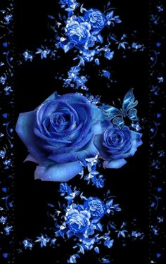 By Artist Unknown. By Artist Unknown. By Artist Unknown. By Artist Unknown. Blue Roses Wallpaper, Flower Phone Wallpaper, Butterfly Wallpaper, Cute Wallpaper Backgrounds, Beautiful Flowers Wallpapers, Beautiful Rose Flowers, Beautiful Nature Wallpaper, Pretty Wallpapers, Photo Bleu
