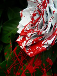 Paint white roses red