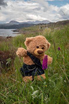 Tatty Teddy, Cute Baby Dolls, Cute Babies, Teddy Hermann, Teddy Bear Pictures, Bear Party, Binky, Cute Bears, Stop Motion