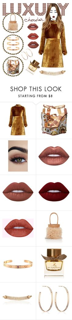 """""""Luxury Chocolate"""" by bananmontan ❤ liked on Polyvore featuring A.L.C., Charlotte Olympia, Lime Crime, Alexander Wang, Cartier, Burberry, Maison Mayle, Vita Fede and vintage"""