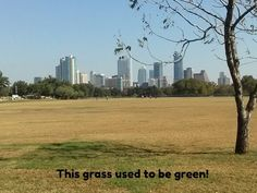 awesome You guys in Buffalo think you have it bad? Just look at what we are dealing with in Austin!