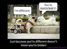 Post image for Dear LOA: Why Are Some People Born Disabled?