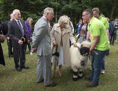 Chaz and Cams at the Royal Norfolk Show at Norfolk Showground