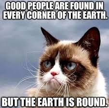 Image result for grumpy cat and fish