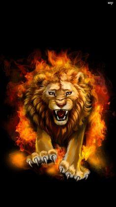 """ღ Leon de la Tribu de Juda ღ--""""De la Roca que te creó te olvidaste; Te has olvidado de Dios tu creador. Y lo vió Jehová, y se encendió en ira. Por el menosprecio de sus hijos y de sus hijas. Y le dijo: Esconderé de ellos mi rostro, Veré cuál será su fín; Porque son una generación perversa, Hijos infieles""""...Deuteronomio 32:18-20 ღ♥"""
