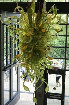 Chihuly sculpture Atlanta Botanical Garden, Botanical Gardens, Christmas Wreaths, Christmas Tree, Sculpture, Holiday Decor, Home Decor, Teal Christmas Tree, Holiday Burlap Wreath