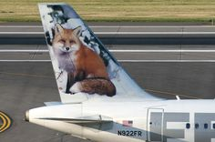 Frontier Airlines Airbus A319-111 N922FR 'Foxy the Red Fox'