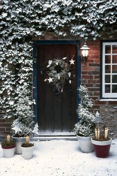 YUle style!! Noel Christmas! Winter Solstice!! Gorgeous dark wood front door with snow covered ivy and snow covered topiaries on each side of the door! Look at the garden plant pots filled with sand, moss and candles - lovely!