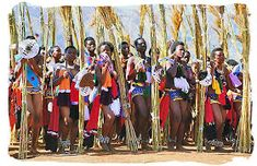 The traditional Reed Dance performed every year by Swazi maidens before the King of Swaziland - South African dance South African Traditional Dresses, African Traditional Wedding, Jacob Zuma, South Africa Tours, East Africa, African Culture, African History, Zulu, History Of Dance