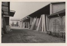Le prime immagini dell'Azienda Donelli a Castelnovo di Sotto
