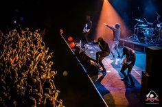 Dreams, Concert, Concerts