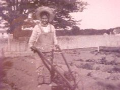 icollect247.com Online Vintage Antiques and Collectables - Black Plowboy Snapshot, Photographer Shadow, 1950s Black