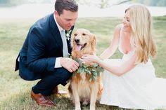 Dog in wedding inspiration, wedding portraits, golden retriever wedding, dog florals, dog greenery collar, days of may florals, outdoor wedding, Fall wedding, bride and groom portraits, pet portraits, wedding day, wedding photography