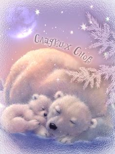 Sweet Dreams #Words - Greetings: Hi, Hello, Good Morning, Good Night, ect.