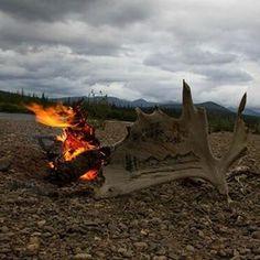 Meine #Traumreise letztes Jahr. Zwölf Tage auf dem Beaver Creek durch #Alaska. Ein unvergessliches #Erlebniss.  #landscape #LisaBrenk #abenteuer #Reise #reisen #weltentdecken #Traum #Erinnerungen