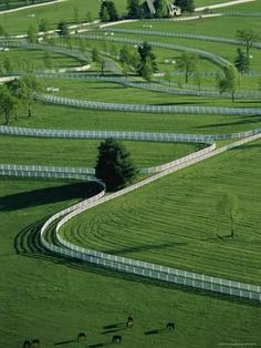 "Aerial View Of Donamire Farms in Kentucky. Love that Kentucky ""blue grass"" and all of those stunning white fences! Dream Stables, Dream Barn, Horse Stables, Horse Barns, Horse Fencing, Pasture Fencing, Kentucky Horse Farms, Casas Country, Vie Simple"