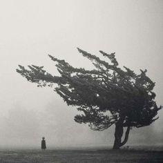 15 misteriose fotografie terrificanti 15