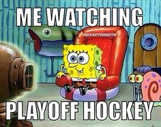 Watching playoff hockey