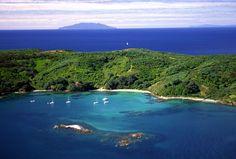 TiriTiri Matangi Island - Hauraki Gulf, Auckland, NZ