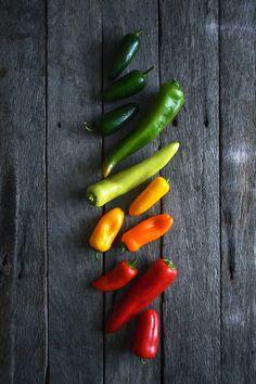 Bullhorn peppers & jalapeños - by heneedsfood