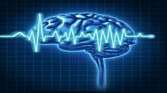 How does music affect the brain   https://www.youtube.com/watch?v=R43Ot9gYOaM