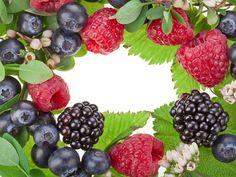цветы, листья, малина, ягоды, черника, Ежевика