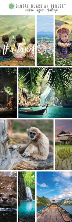 Are you ready to discover Thailand?  Our Learning Capsule contains over 50 pages of rich content, learning opportunities, interviews, recipes and art projects, plus much more!