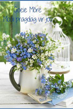 Photography Basics, Still Life Photography, Art Photography, Beautiful Flower Arrangements, Floral Arrangements, Beautiful Flowers, 24 Avril, Goeie More, Christmas Lanterns