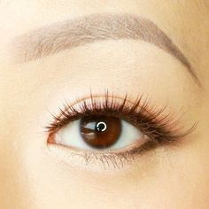 Get this natural look using one of shu uemura's neutral eye liners
