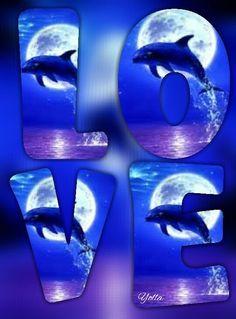Ocean Wallpaper, Wallpaper Iphone Disney, More Wallpaper, Cute Wallpaper Backgrounds, Cellphone Wallpaper, Cute Wallpapers, Love Images, Love Pictures, Broncos Wallpaper
