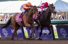 Beholder and Songbird fight to the finish in Breeders' Cup Distaff with Beholder winning by a nose