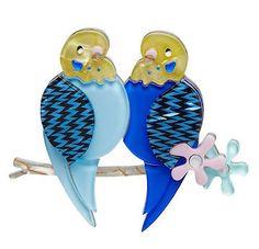 Erstwilder Birds. budgies 0824