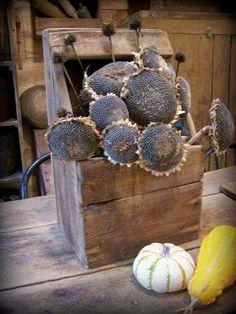 primitive box with dried sunflowers Primitive Furniture, Primitive Antiques, Primitive Decor, Dried Sunflowers, Sunflower Head, Primitive Autumn, Vibeke Design, Primitive Gatherings, Prim Decor