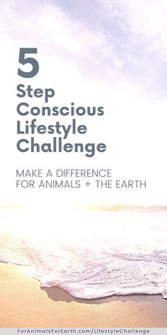 I'm a firm believer that we all have something to offer animals and the environment. And it doesn't have to be overwhelming! Join me for 5 simple challenges that WILL make a difference. It's free!