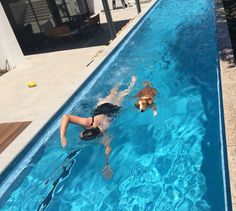 Swimming partner Cleo