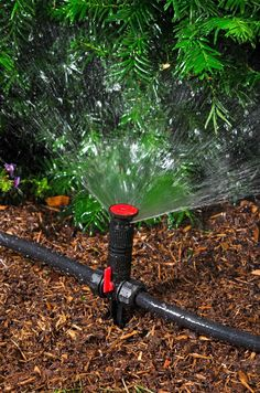 Above Ground Irrigation Systems for Landscaping | DIY Sprinkler System